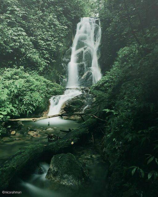 Air terjun Arai Indah