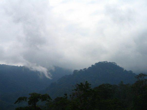 Taman Nasional Bukit Baka - Bukit Raya